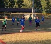 U8 Soccer Players